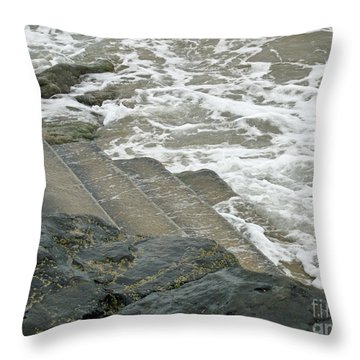 Throw Pillow featuring the photograph Watch Your Step by Brenda Brown