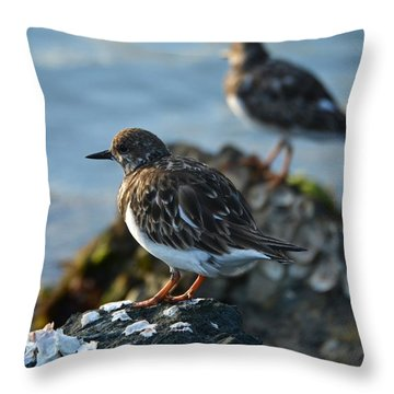 Watchbirds Throw Pillow