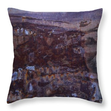 Watcher Of The Universe Abstract Throw Pillow