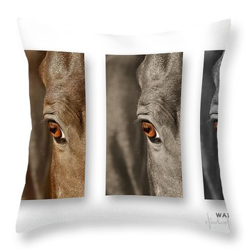 Watchful Triptych Throw Pillow