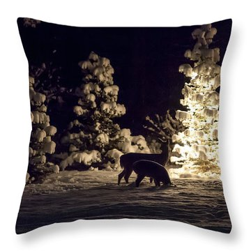 Throw Pillow featuring the photograph Watchful Eye by Aaron Aldrich