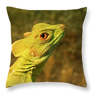 Watchful Eye Of The Green Basilisk Lizard  Throw Pillow by Inspired Nature Photography Fine Art Photography