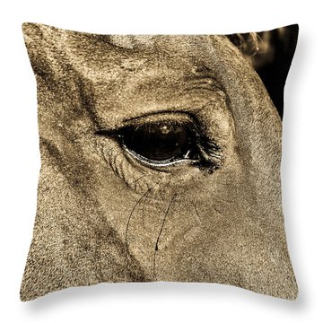 Watchful Eyes Throw Pillow