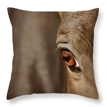 Watchful Throw Pillow by Michelle Twohig