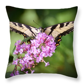 Throw Pillow featuring the photograph Watching by Kerri Farley