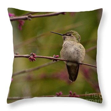 Watching Spring Arrive Throw Pillow