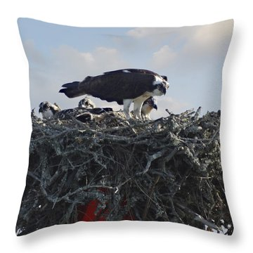 Watching The Kids - Ospreys Throw Pillow