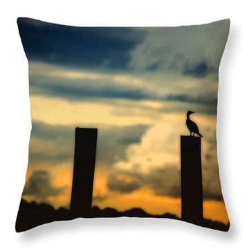Watching The Sunrise Throw Pillow by Karol Livote
