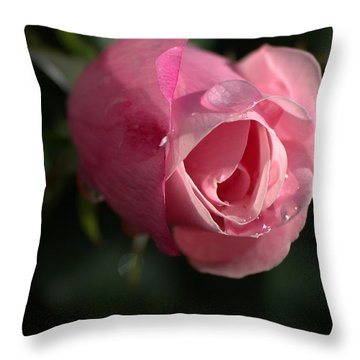 Water And Rose Throw Pillow