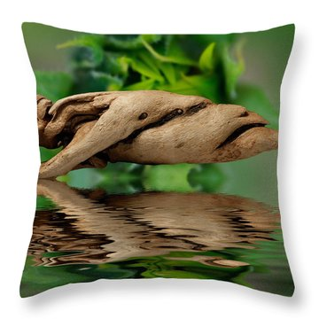 Water Balance Throw Pillow by WB Johnston