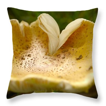 Water Bowl Throw Pillow