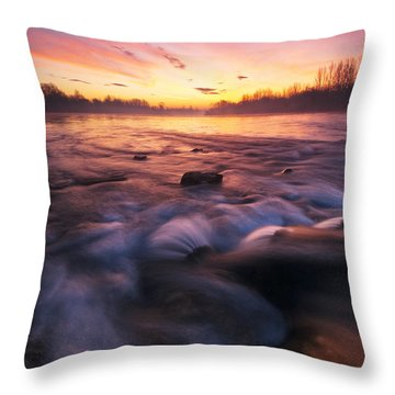 Water Claw Throw Pillow by Davorin Mance