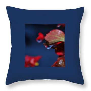 Water Coloured Rhapsody Throw Pillow