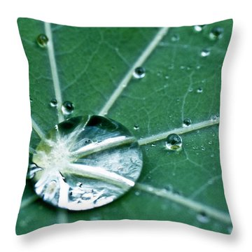 Water Droplet On A Lotus Leaf Throw Pillow by Heiko Koehrer-Wagner