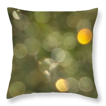 Sacred Water Throw Pillow by Deborah Moen