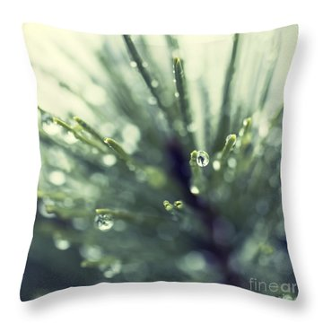 Water Droplets On Fir Needles - Hipster Photo Square Throw Pillow
