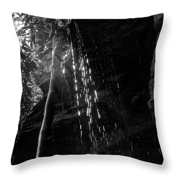 Water Drops After Storm Throw Pillow by Dan Friend