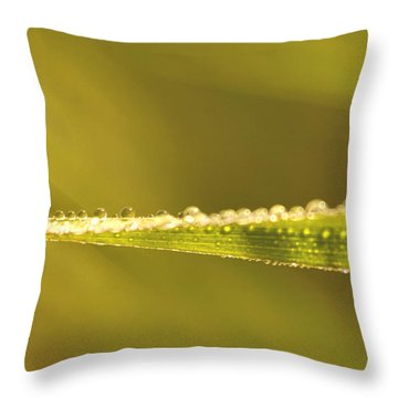 Water Drops On A Leaf Throw Pillow by Peggy Collins