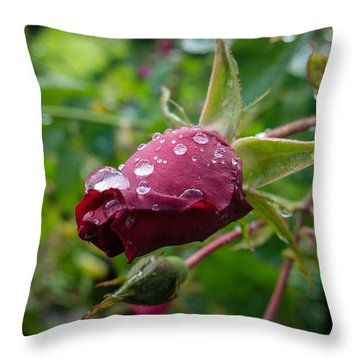 Rain Drops On Rose Throw Pillow