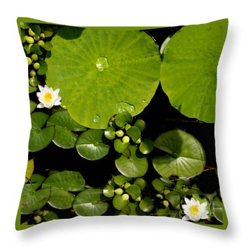 Water Drops Bristol Rhode Island Throw Pillow