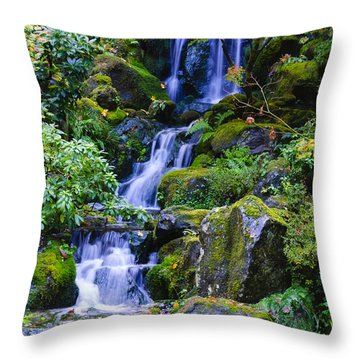 Water Fall Throw Pillow by Dennis Reagan