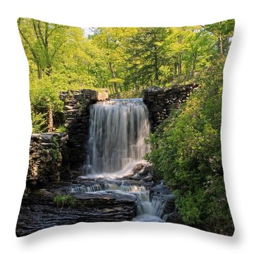 Water Fall Moore State Park 2 Throw Pillow
