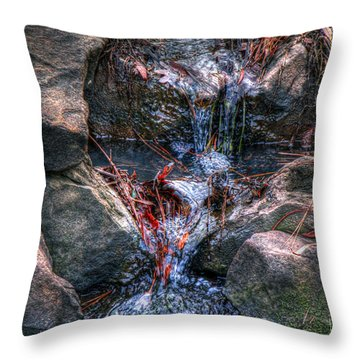 Water Falls Throw Pillow by Andy Lawless