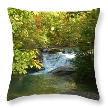 Water Falls Throw Pillow by Kathleen Struckle