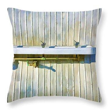 Water Falls Like Money Throw Pillow by Scott Campbell