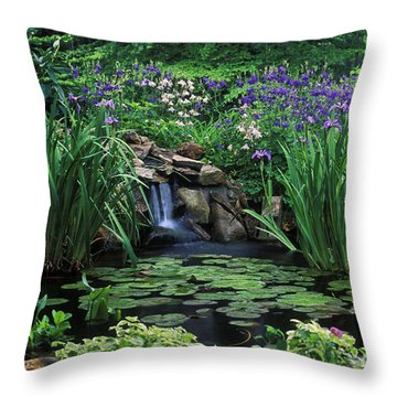 Water Feature - Fs000150 Throw Pillow