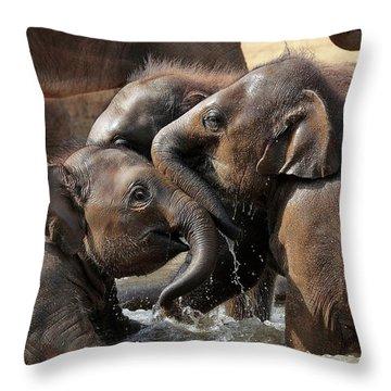 Play Throw Pillows