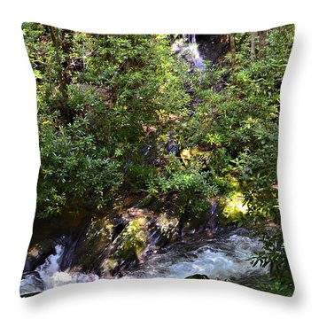 Water In The Forest Throw Pillow by Susan Leggett