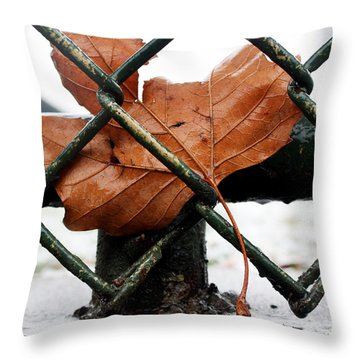 Water Leaf Throw Pillow by Mark Ashkenazi