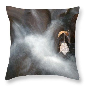 Water Leaf Throw Pillow by Mark Russell