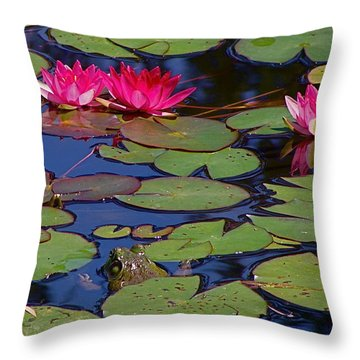 Peek-a-boo Frog Throw Pillow by Rita Mueller