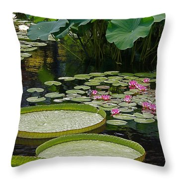 Throw Pillow featuring the photograph Water Lilies And Platters And Lotus Leaves by Byron Varvarigos
