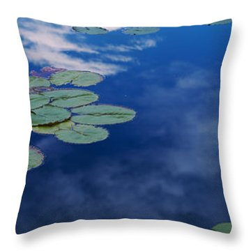 Water Lilies In A Pond, Denver Botanic Throw Pillow