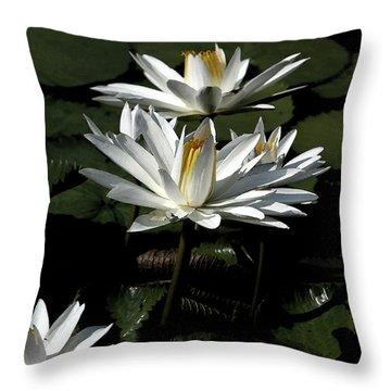 Throw Pillow featuring the photograph Water Lilies by John Freidenberg