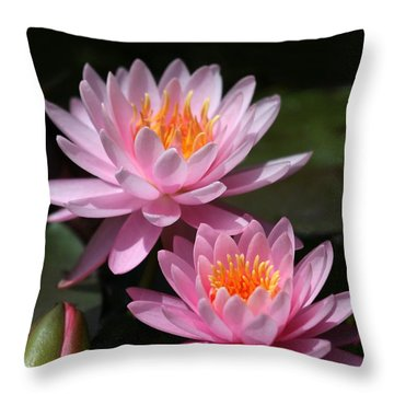 Water Lilies Love The Sun Throw Pillow