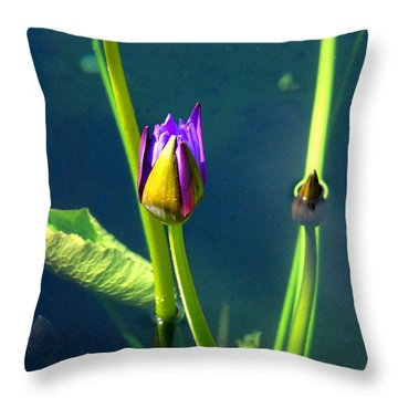 Water Lily 005 Throw Pillow