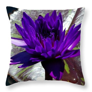 Water Lily 008 Throw Pillow