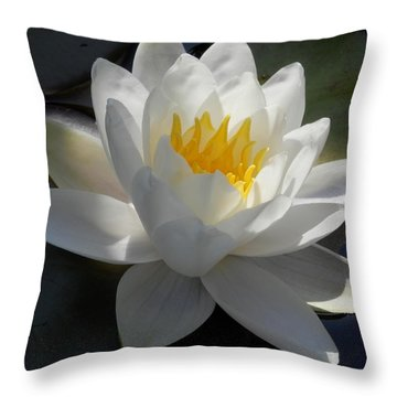 Water Lily 2 Throw Pillow