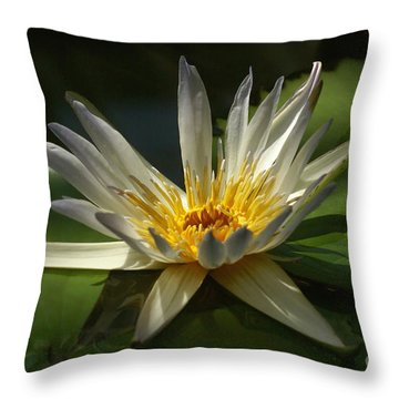 Water Lily 2 Throw Pillow by Rudi Prott