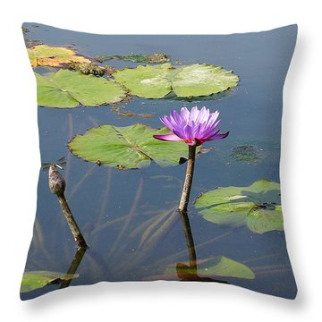 Water Lily And Dragon Fly One Throw Pillow