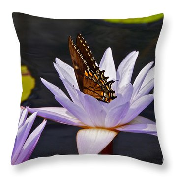 Water Lily And Swallowtail Butterfly Throw Pillow
