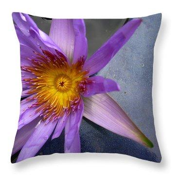 Lily Sparkle Throw Pillow