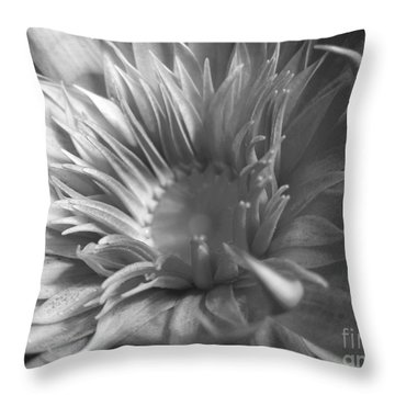 Water Lily B N W Throw Pillow