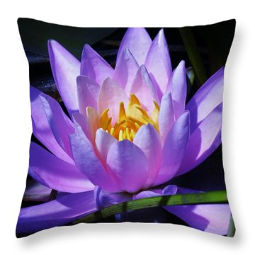 Water Lily Blues Throw Pillow