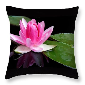 Throw Pillow featuring the photograph Water Lily by Elizabeth Budd