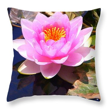 Water Lily In Pink Throw Pillow